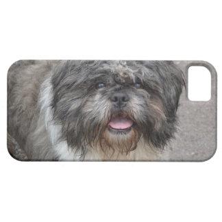 Lhasa Apso iPhone 5 Case