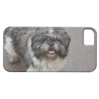 Lhasa Apso iPhone 5 Covers