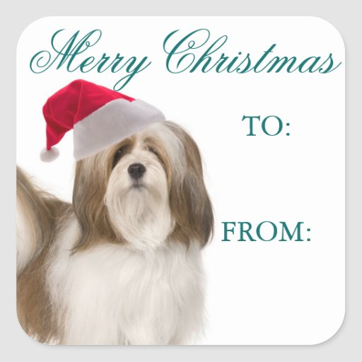 Lhasa Apso Christmas Gift Tags Square Stickers