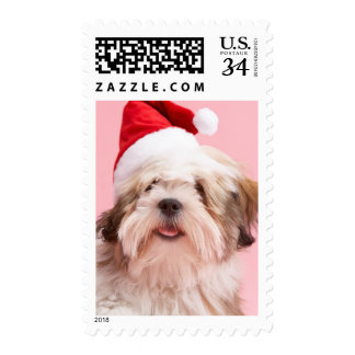 Lhasa Apso Dog Wearing Santa Hat Postage