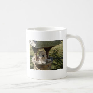 Lhasa Apso in a Well Classic White Coffee Mug