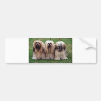 Lhasa Apso Trio Bumper Stickers