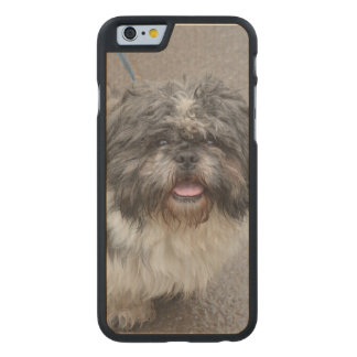 Lhasa Apso Carved® Maple iPhone 6 Case