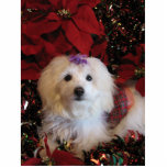"LhasaPoo Cutout<br><div class=""desc"">Cute dog dressed for the Holidays</div>"