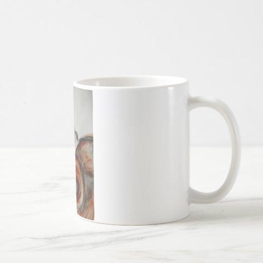 Liado en mantas taza