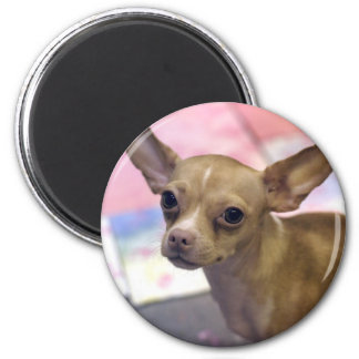 Lian Xin Headshot (magnet) 2 Inch Round Magnet