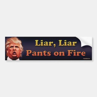 Liar, Liar, pants on fire Bumper Sticker