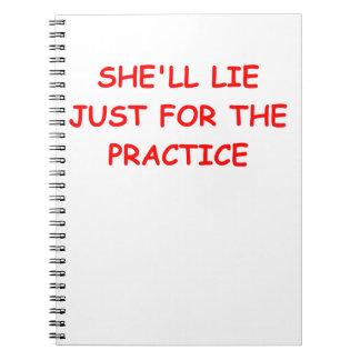 liar spiral notebook