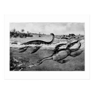 Liassic Plesiosaurs art postcard