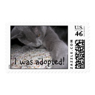 Liath Mhor was adopted! Postage Stamps