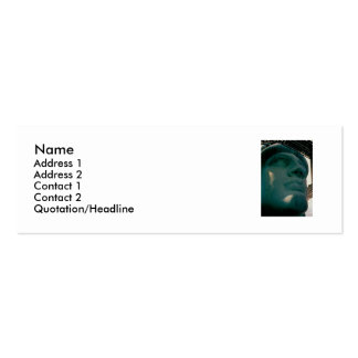 lib, Name, Address 1, Address 2, Contact 1, Con... Business Card
