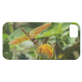 Libélula anaranjada en capullo de rosa amarillo iPhone 5 Case-Mate coberturas
