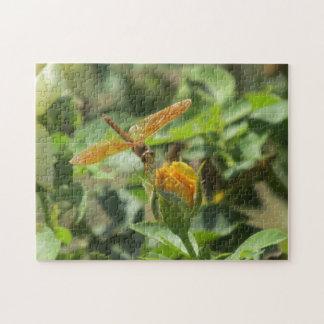 Libélula anaranjada en capullo de rosa amarillo rompecabeza con fotos
