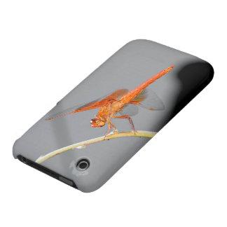Libélula anaranjada iPhone 3 fundas