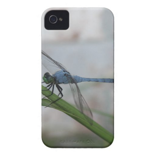 Libélula azul iPhone 4 carcasa