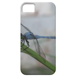 Libélula azul iPhone 5 Case-Mate cárcasas