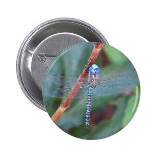 Libélula azul pin redondo de 2 pulgadas