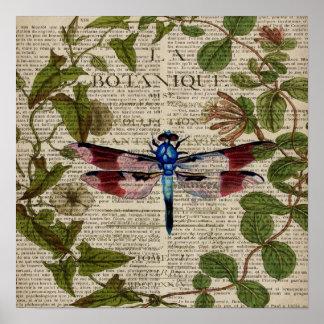 libélula botánica francesa del vintage del arte