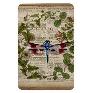 libélula botánica francesa del vintage del arte imán de vinilo