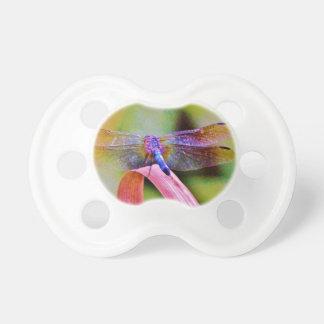 Libélula brillante del rosa de arco iris