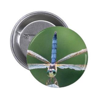 LIBÉLULA con las alas dañadas Pin