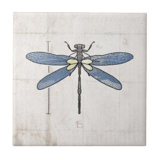 Libélula de las series de los insectos por VOL25 Azulejo Cuadrado Pequeño