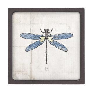 Libélula de las series de los insectos por VOL25 Cajas De Regalo De Calidad