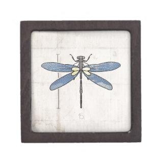 Libélula de las series de los insectos por VOL25 Caja De Joyas De Calidad