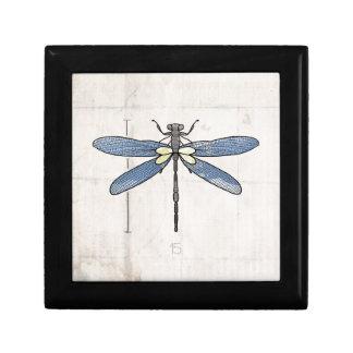 Libélula de las series de los insectos por VOL25 Cajas De Regalo