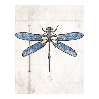Libélula de las series de los insectos por VOL25 Membrete