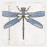 Libélula de las series de los insectos por VOL25 Pegatina Cuadrada