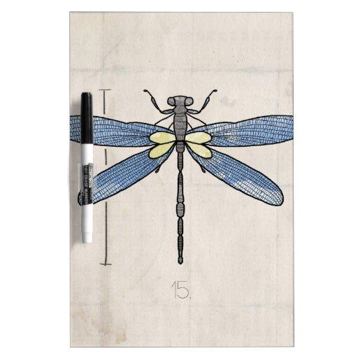 Libélula de las series de los insectos por VOL25 Pizarras Blancas