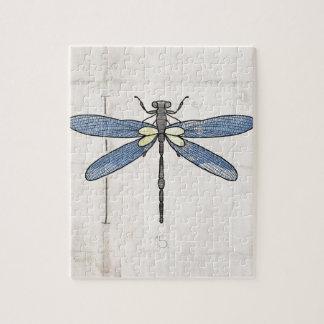 Libélula de las series de los insectos por VOL25 Puzzles Con Fotos