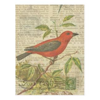 Libélula del Birdcage del pájaro del vintage del Tarjeta Postal