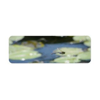 libélula del vuelo etiquetas de remite