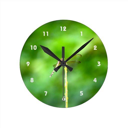 libélula en insecto amarillo del fondo del verde d reloj redondo mediano