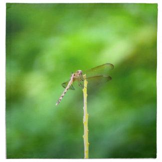 libélula en insecto amarillo del fondo del verde d servilletas
