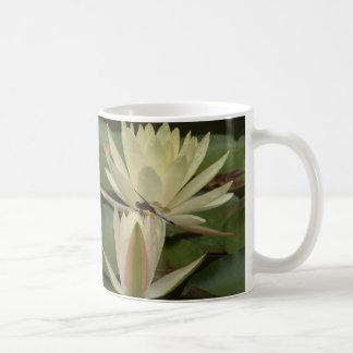 Libélula en la taza de Waterlily