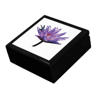 Libélula en lirio de agua púrpura caja de regalo