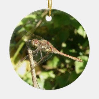 Libélula en un ornamento de la ramita adorno navideño redondo de cerámica