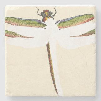 Libélula miniatura en el fondo blanco posavasos de piedra