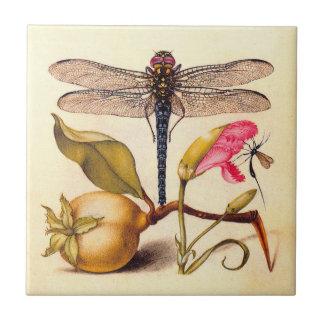 Libélula, pera, clavel, e insecto azulejo cuadrado pequeño