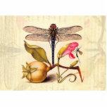 Libélula, pera, clavel, e insecto escultura fotográfica
