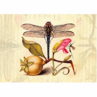 Libélula, pera, clavel, e insecto imán fotoescultura