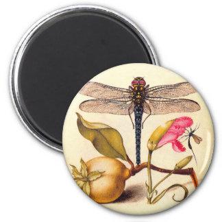 Libélula, pera, clavel, e insecto imán para frigorífico