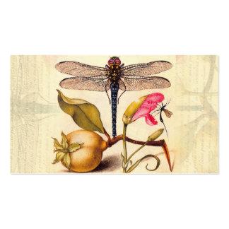 Libélula, pera, clavel, e insecto tarjetas de visita