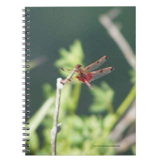 Libélula roja note book