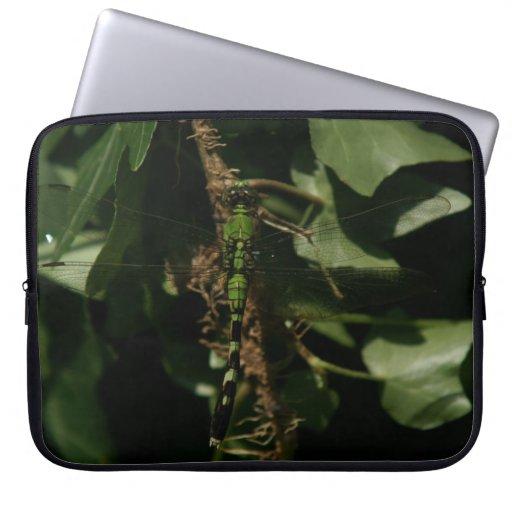 Libélula verde hermosa mangas portátiles