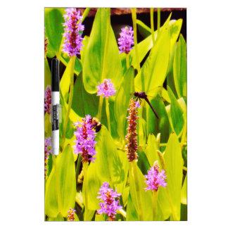Libélula y flores púrpuras tableros blancos