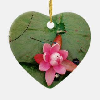 Libélulas azules en una flor de loto rosada ornatos